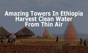 Warka Water can be a possible solution in arid lands. Here's the story.